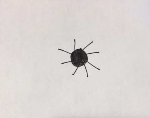 Drawing of a not scary spider